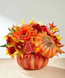 Bursts with harvest cheer