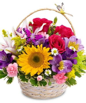 This colorful basket arrangement is sure to please!