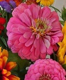 NJ Wildflower Bouquet