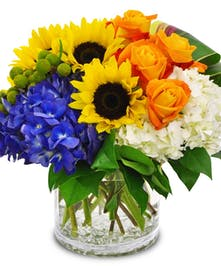 Beautiful flowers in a cylindrical vase