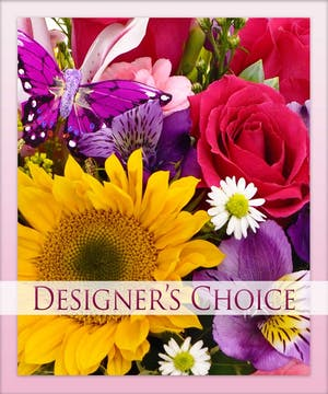 Let our designer choose!