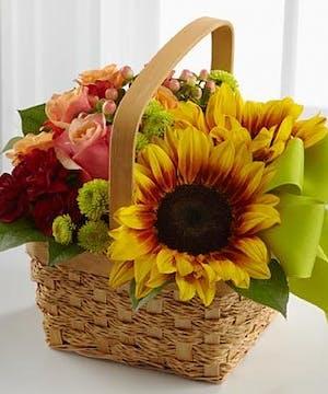 Bright Day Basket - Fischer Flowers