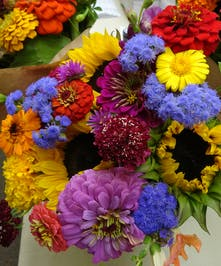 $20 Tuesday - Wildflowers