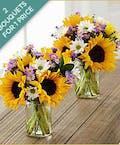 Sunflower Fields Bouquets